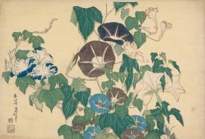 Volubilis et rainette Série dite des « Grandes Fleurs » Hokusai Katsushika (1760-1849), vers 1830-1834. Crédits BNF, ne figure pas dans l'ouvrage cité.