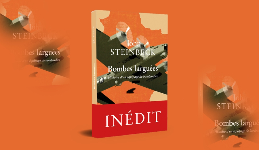 Steinbeck 3D